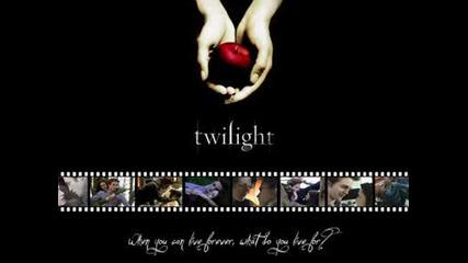 New Moon / Twilight