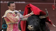 Gored Spanish Bullfighter Released From Hospital