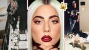 Простреляха асистента на Лейди Гага и отвлякоха две от кучетата ѝ