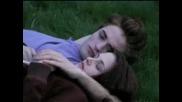 Bella & Edward - Bleeding Love - Twilight