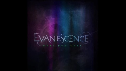(2011) Evanescence - What You Want