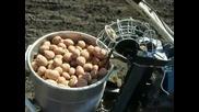 Как се сеят картофи в Русия!