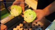 Течен восък се превръща в зеленчуци