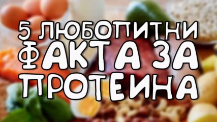 5 любопитни факта за протеина