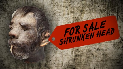 Got 50K to spare? Why not buy a real shrunken head!