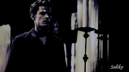 (au) Damon & Elena - Undisclosed Desire