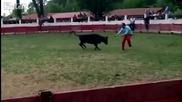 Не си играй с бика...