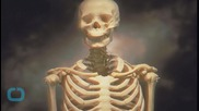 DNA Analysis Reignites Debate Over Fate of 9,000-Year-Old Skeleton
