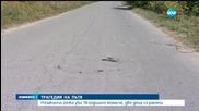 При гонка: Кола блъсна четири деца, едното загина (обновена)