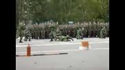 Вдв - Шоу Руските Десантни Воиници
