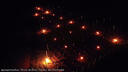 France: Acres of candles light up the night sky as farmers protect vineyards from frost
