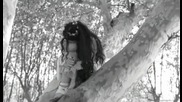 Evanescence - My Immortal ( Превод )