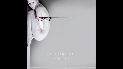 The Eden House - Butterflies