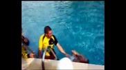 Топалова в басейн с фенове на Миньор