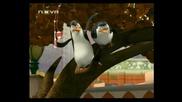 Пингвините от Мадагаскар - епизод 20 - (бг аудио)