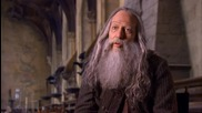Harry Potter and the Deathly Hallows Part 2 Official Ciaran Hinds - Aberforth Dumbledore