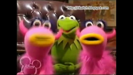 Kermit The Frog - Phenomenon