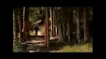 Mountain Bike [virtuous]