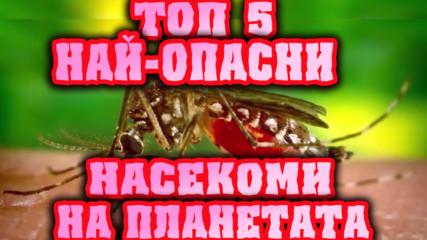 Топ 5 Най-опасни насекоми на планетата