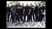 Радо шишарката - Бели птици [hq]