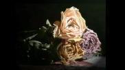 Класическа Китара - Romance De Amor