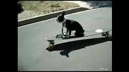 Малко куче се пребива с скейтборд