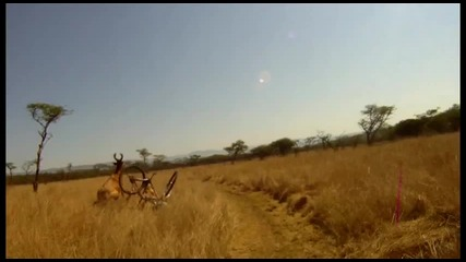 Антилопа Нинджа събаря колоездач в движение