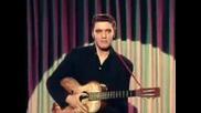 Elvis Presley Blue Suede Shoes Color