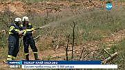 Овладяха пожар, обхванал 15 000 декара в Тополовградско