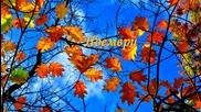♪ ♥ Ноември - El ♥ ♪