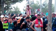 Macedonia: Injury & illness as migrants try to enter country from Greece