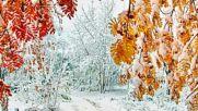 Зима през есента-winter in autumn