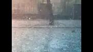Казанлъшката Градушка - Розариума