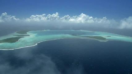 Красотата на тихия океан