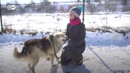 """Една германка в България: """"Тук се чувствам полезна"""""""
