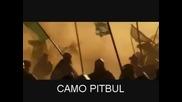 imperia online последната битка Pitbul