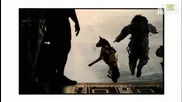 Dogs_101_-_belgian_malinois
