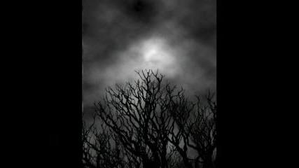 ~#~Dark~#~
