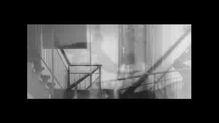 Trailer Banlieue