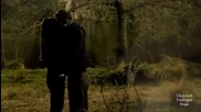 The Vampire Diaries - Stefan Elena - Perfect