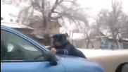 Нарушител метна полицай на капака в Бишкек