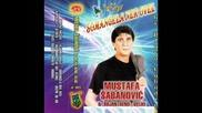 Mustafa Sabanovic-rovena mecave