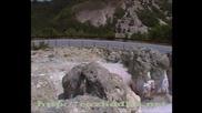 Каменните гъби - Бели Пласт