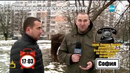 Боби Ваклинов в пряк сблъсък с насилници над животни - Господари на ефира (18.03.2015)