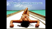 18 минути - Хитове с Dj Pocko - The voice of summer 2011