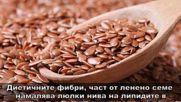 5-те най-полезни в света на семена