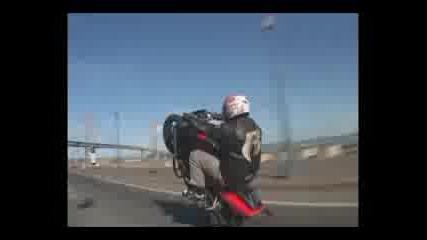 Ruff Ryders Maniaci