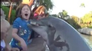 Делфин захапва младо момиче