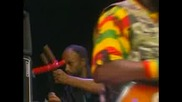 The Wailers - Roots Rock Reggae (live 2002)