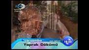 Следва в Листопад - Yaprak dokumu Лейла се жени с Оуз